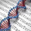 biologia20molecular20y20citogenetica-1.png